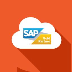 SAP cloud platform licensing