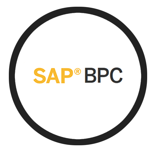SAP BPC Partner Managed Cloud Solutions | Buyalicence UK