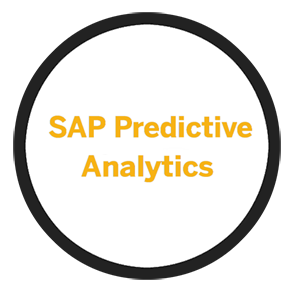 SAP Predictive Analytics Partner Managed Cloud Solutions | Buyalicence UK